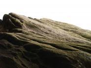mypicturedlife - Brimham Rocks thumbnail