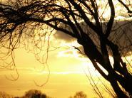 mypicturedlife - Sunset 1st-Feb-2012 thumbnail